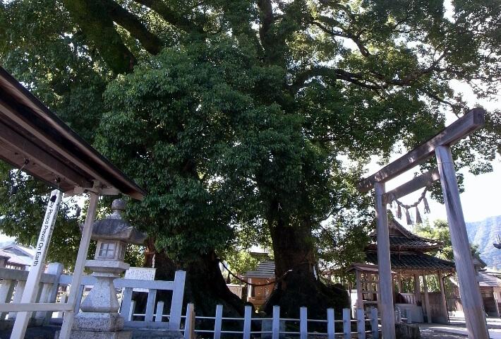 尾鷲神社と金剛寺